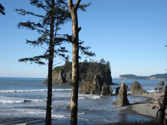Pacific Northwest coastal scene