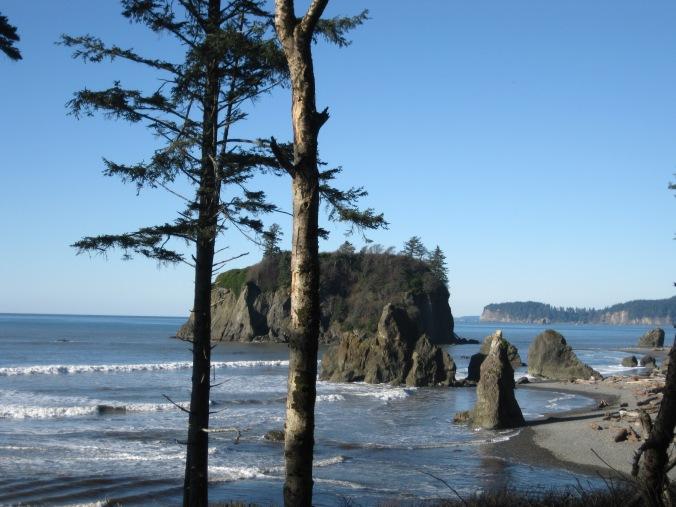 Pacific Northwest coastal scene